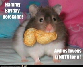 Hammy Birfday, Betskand!