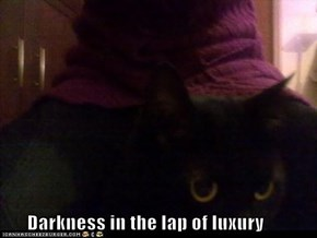 Darkness in the lap of luxury