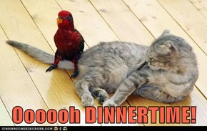 Oooooh DINNERTIME!