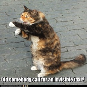 Did somebody call for an invisible taxi?