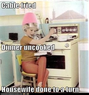 Cable fried Dinner uncooked Housewife done to a turn