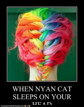 WHEN NYAN CAT SLEEPS ON YOUR HEAD