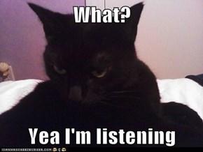 What?  Yea I'm listening