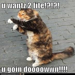 u wantz 2 fite!?!?!  u goin doooowwn!!!!