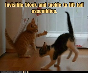 Invisible  block  and  tackle  to  lift  tail assemblies.