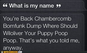 Very Good, Siri!