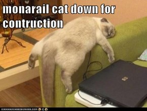 monarail cat down for contruction