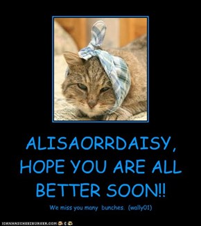 ALISAORRDAISY, HOPE YOU ARE ALL BETTER SOON!!