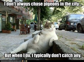 Most Interesting (Obese) Cat In The World...