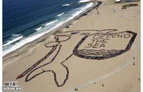 Beach Art WIN