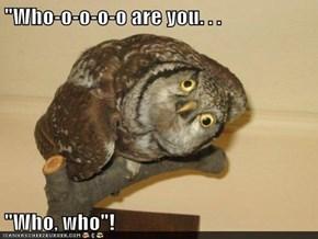 """Who-o-o-o-o are you. . .   ""Who, who""!"