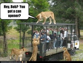 Hey, Bob?  You got a can opener?