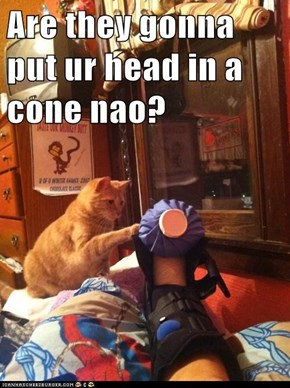 Are they gonna put ur head in a cone nao?