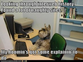 Looking through interweb history.  Found a lot of naughty sites.  My hoomin's got some explainin' to do