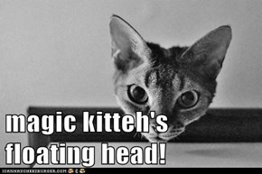 magic kitteh's floating head!