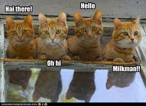 Hai there!