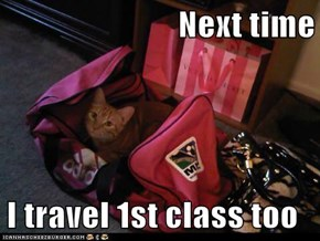 Next time  I travel 1st class too