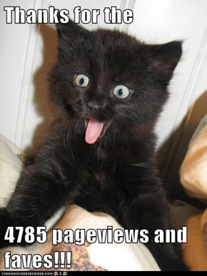 Thanks for the   4785 pageviews and faves!!!
