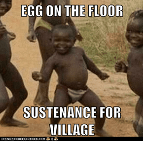 EGG ON THE FLOOR  SUSTENANCE FOR VILLAGE