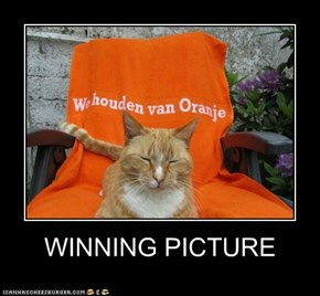 WINNING PICTURE