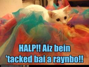 HALP!! Aiz bein  'tacked bai a raynbo!!
