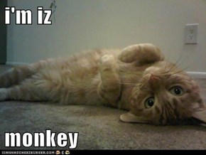 i'm iz  monkey