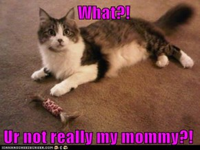 What?!  Ur not really my mommy?!