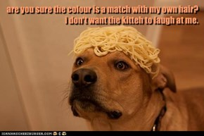 are you sure the colour is a match with my own hair? i don't want the kitteh to laugh at me.