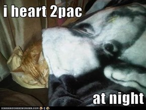 i heart 2pac  at night