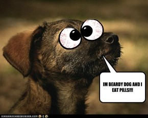 IM BEARDY DOG AND I EAT PILLS!!!