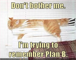 Don't bother me.  I'm trying to remember Plan B.