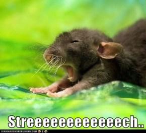 Streeeeeeeeeeeech..