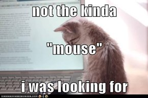 "not the kinda ""mouse"" i was looking for"