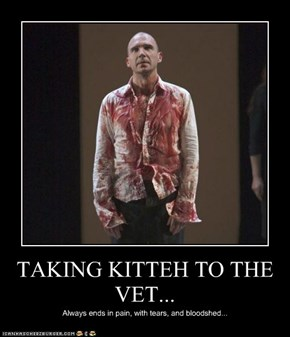 TAKING KITTEH TO THE VET...