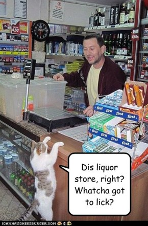 Dis liquor store, right? Whatcha got to lick?