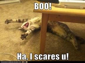 BOO!  Ha, I scares u!