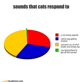 sounds that cats respond to