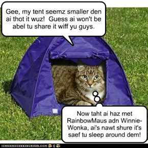 my tent shrunk