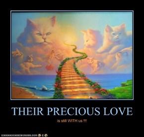 THEIR PRECIOUS LOVE