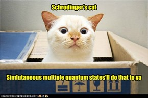 The Copenhagen interpretation of quantum mechanics