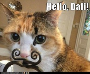 Hello, Dali!