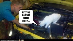 HEY, YOU PAWS IS GITTEN DIRTY.....