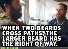 In the Event of a Tie, The Two Beards Must Fight to the Death to Determine the Vltimate Victor