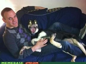 Satan's Dog