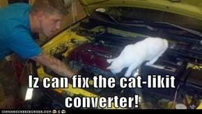 Iz can fix the cat-likit converter!