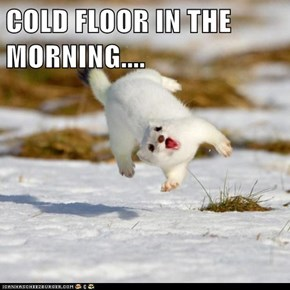COLD FLOOR IN THE MORNING....