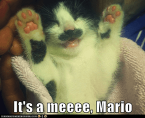 It's a meeee, Mario