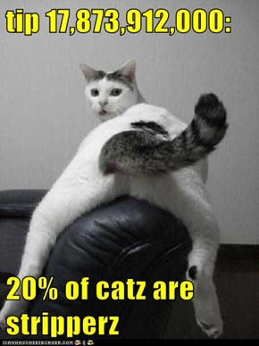 tip 17,873,912,000:  20% of catz are stripperz