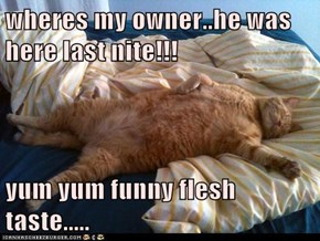 wheres my owner..he was here last nite!!!  yum yum funny flesh taste.....