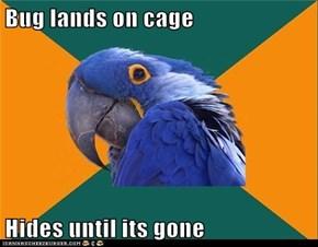 Bug lands on cage  Hides until its gone